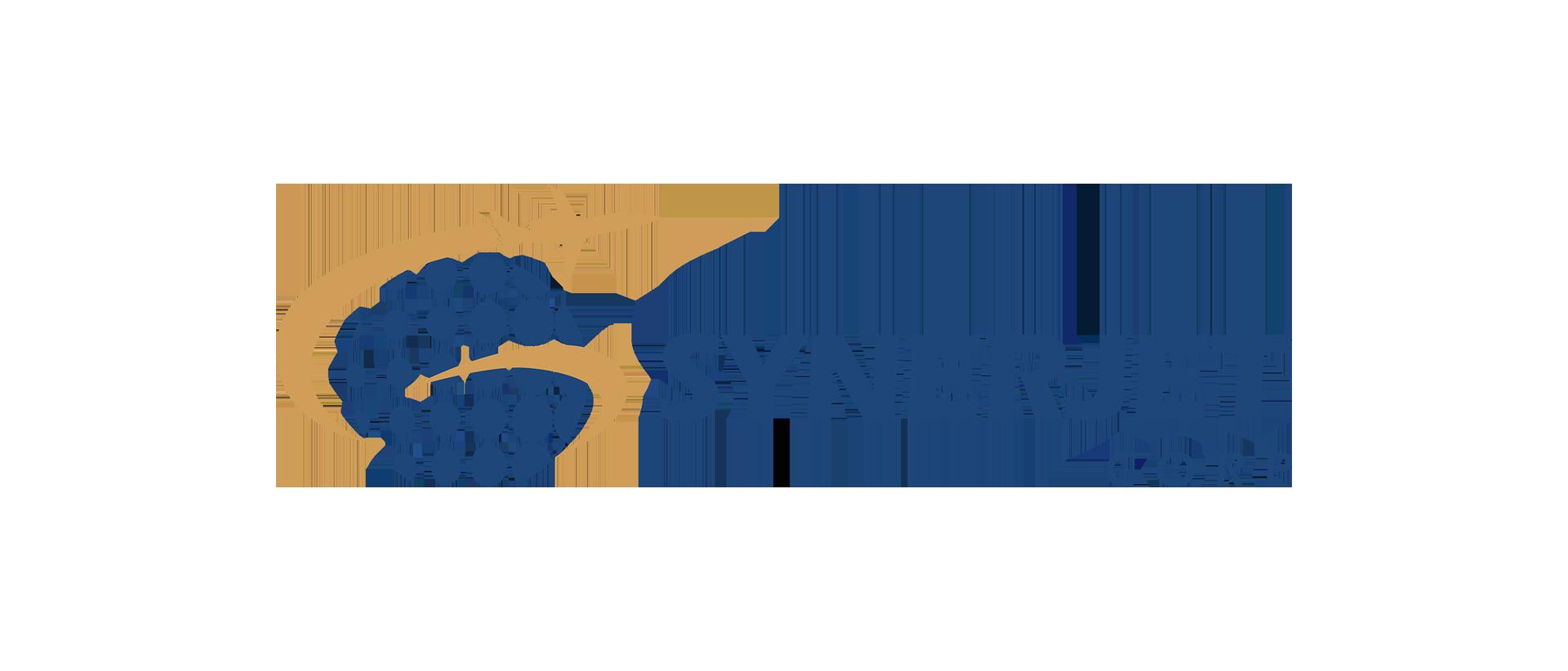 SynerJet_Logo_small_1920x822
